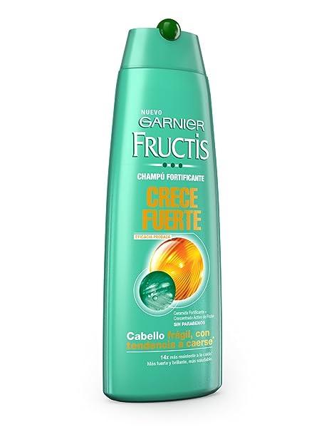 Garnier Fructis Champú Pure Fresh Pepino Purificante - 360 ml: Amazon.es: Belleza