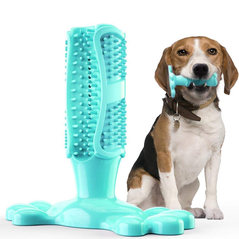 Dog Toothbrush Brushing Stick Dog Teeth Cleaning Puppy Dental Care Brushing Stick Effective Doggy Teeth Cleaning Massager Nontoxic Food Grade Synthetic Material Bite Resistant for Puppy (Turquoise) by LISTOS'