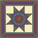 Easy Quilt Kit Brilliant Batik Lonestar-queen/EXPEDITED SHIPPING
