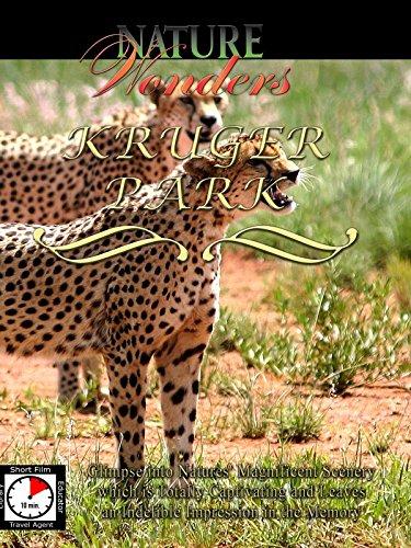 Nature Wonders - Kruger Park - South Africa