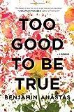 Too Good to Be True, Benjamin Anastas, 0547913990
