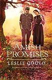 Bargain eBook - Amish Promises