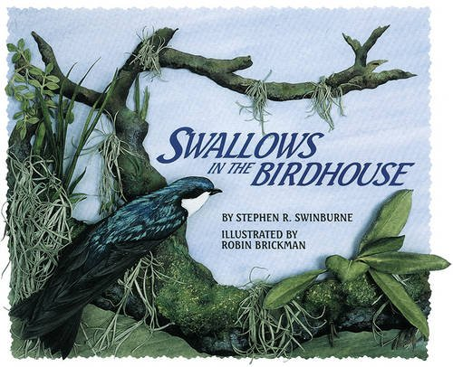 Mill Birdhouse - Swallows in the Birdhouse