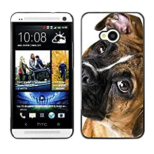 VORTEX ACCESSORY Hard Protective Case Skin Cover - boxer breed canine dog pet eyes muzzle - HTC One M7