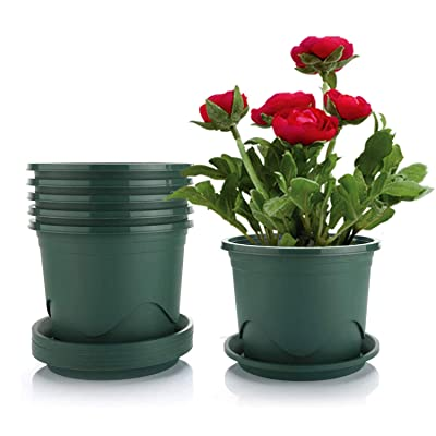 Livelyhom Plant Pots with Saucers - 0.5 Gallon 6.5 Inch Plastic Dark Green Set of 6, Root-Control Nursery Seedling Planter Garden Flower Pot Container for Indoor Outdoor Bonsai Plants, Aloe, Herb: Home & Kitchen