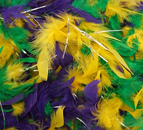 Mardi Gras Colors Feather Boa Masquerade Halloween Costume Fashion Glamour Scarf -