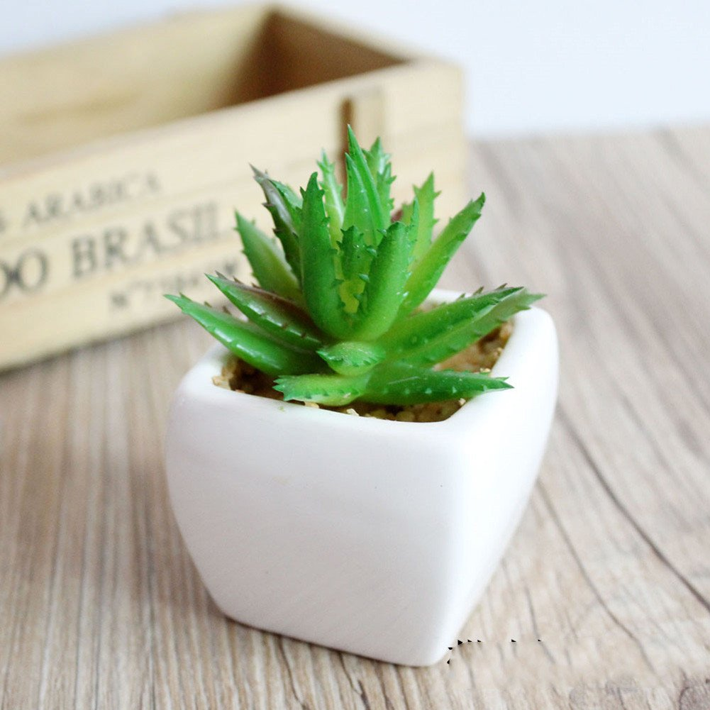 Amazon.com: Lopkey Plastic Mini Succulents Artificial Cactus Plant ...