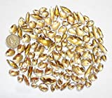LOVEKITTY 100 pcs lot - Sew-On Gems - Champagne Mixed Shapes Flat Back Gems (Mixed Sizes has thread holes)