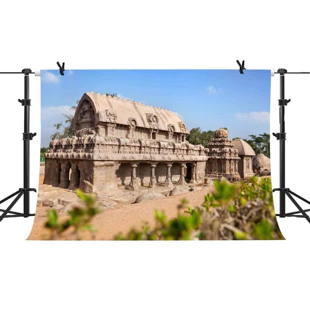 インドの歴史的な場所 背景幕 写真 背景 ビニール 10x7フィート YouTubeブック ポートレート 写真 背景 アート スタジオ小道具 PHMOJEN PPH567   B07K33456R
