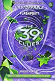 the 39 clues book 39 - The 39 Clues: Unstoppable Book 4: Flashpoint