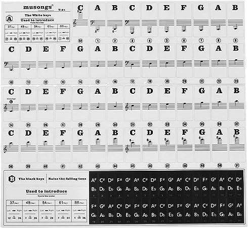 Muslady Pegatinas para piano para 37/49/54/61/88 Teclados de ...