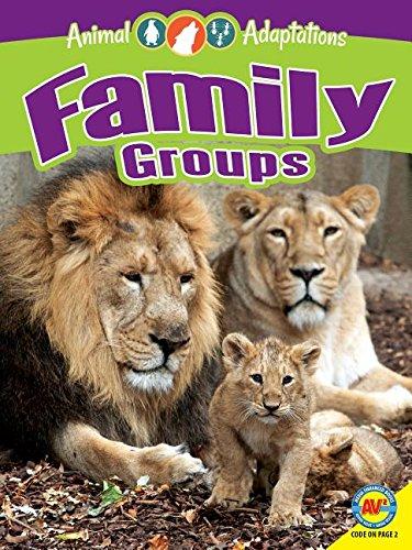 Family Groups (Animal Adaptations)