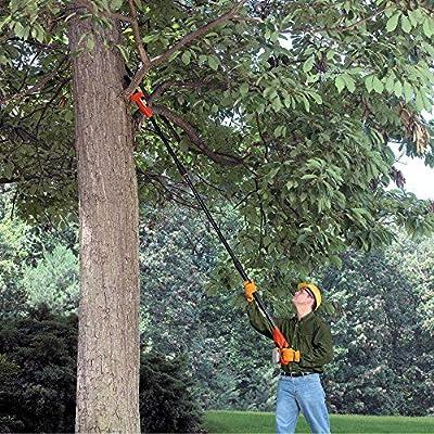 Morocca Black Decker Cordless Pole Chain Saw Chainsaw Pruner Branch Telescoping LPP120B