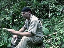Grenada Jungle
