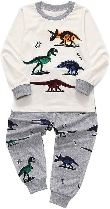 DIGOOD Teen Toddler Baby Boys Girls 2Pcs Outfits Fall Winter Clothes,Cartoon Dinosaur Print T-Shirt Tops+Trousers Sets