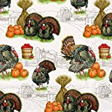 Ideal Home Range 3-Ply Paper Lunch Napkins, 20-Count, 6.5 x 6.5-Inches Folded, Harvest Turkey