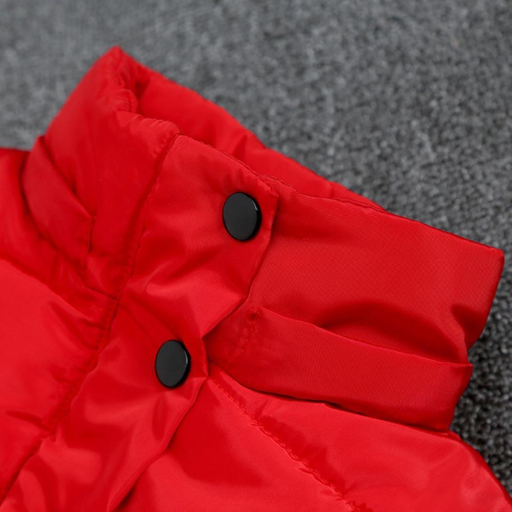 Abrigo de Bebé Invierno Amlaiworld Bebé Niñas Niños Abajo Chaqueta Abrigo Otoño Invierno Ropa Caliente: Amazon.es: Deportes y aire libre