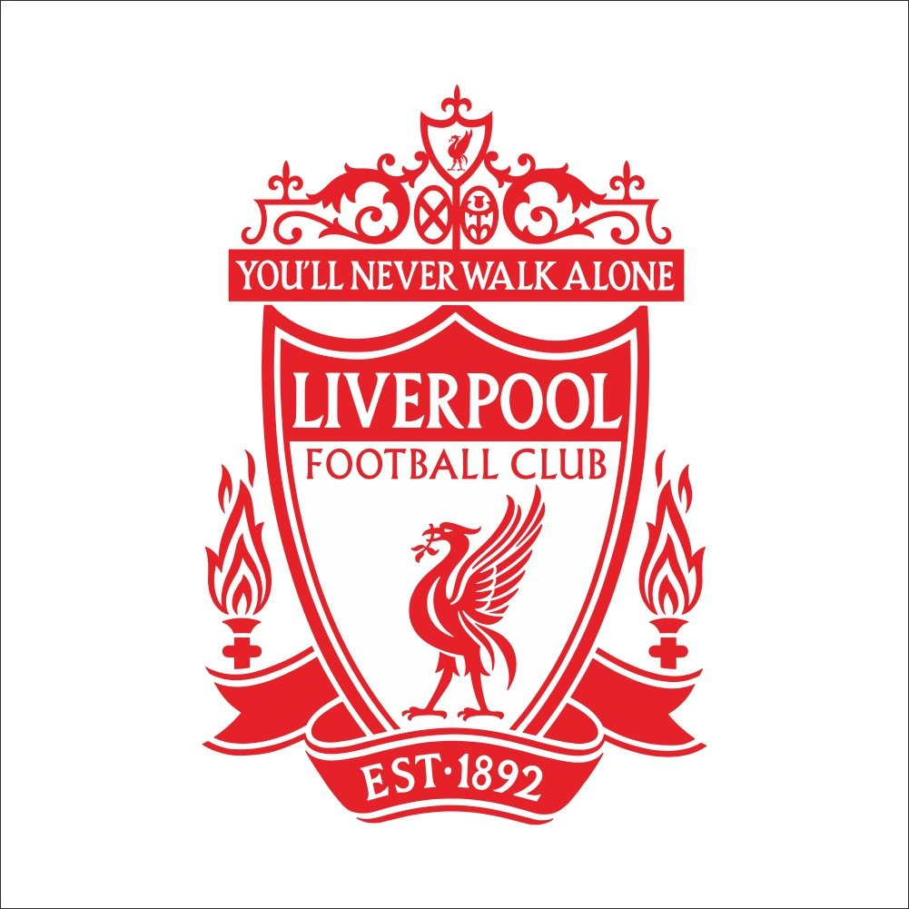 Fange diy removable liverpool fc team logo you are never walk alone art mural vinyl waterproof wall stickers kids room decor nursery decal sticker wallpaper