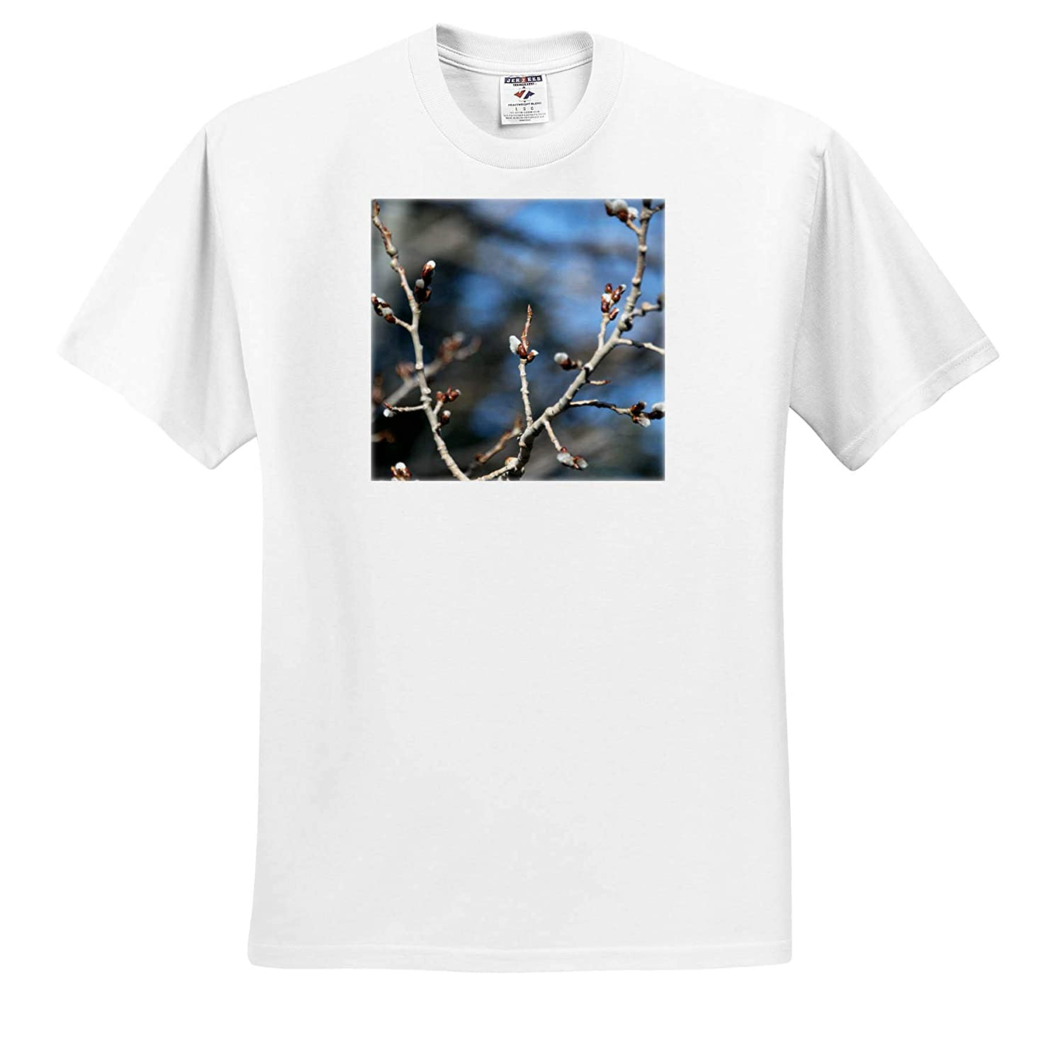 Aspen Buds 3dRose Jos Fauxtographee Tree Blossoms Coming Out of an Aspen Tree in Springtime T-Shirts