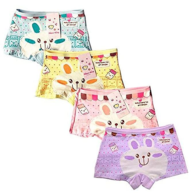087d21f02702 ARAUS Niñas Ropa Interior Conejo Calzoncillos de Algodón Panties Braga  Braguita Transpirable Suave para Niños Pequeños en Paquete de 4, 2-10Años:  Amazon.es: ...