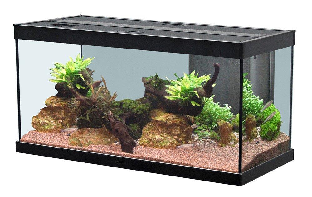 Großartig Aquatlantis Style LED Aquarium 80 x 35 cm 100 L Black: Amazon.co  FM72