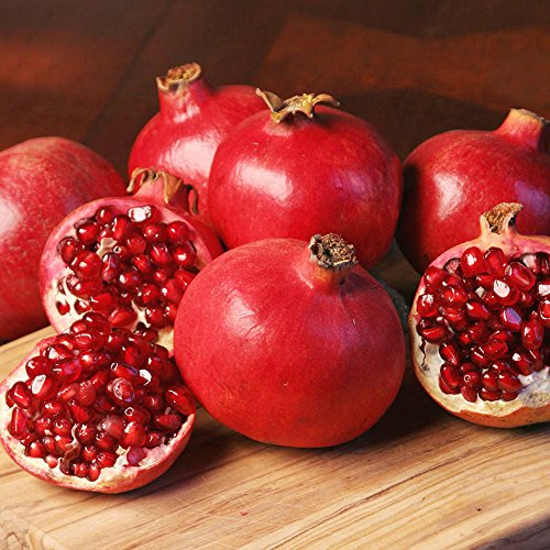 25 POMEGRANATE FRUIT TREE Punica Granatum Red Seeds
