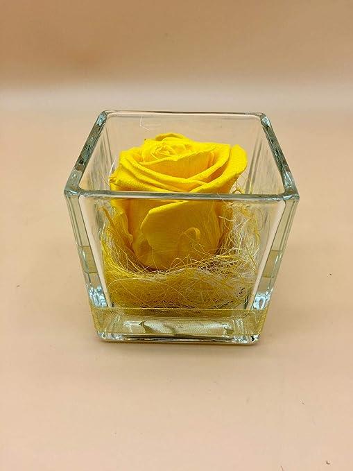 Rosa eterna Amarilla. Gratis TU ENVÍO Prime. Rosas eternas Amarillas. Rosa preservada Amarilla. Hecho en España.: Amazon.es: Hogar
