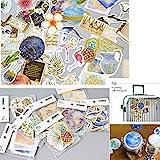 8 Pack Planner Cute Stickers - Tropical rain Forest Flower Flamingo Decorative Sticker Collection for Calendars, Arts, Kids DIY Crafts, Scrapbooking, Album, Bullet Journals