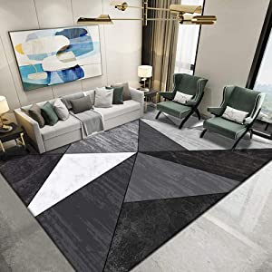 Modern Gray Rugs for Living Room, Indoor Odor-Free Washable Protective Rug Suitable for Study Bedroom, Short Pile Decorative Rug, Rug Slip mat-F_200300CM