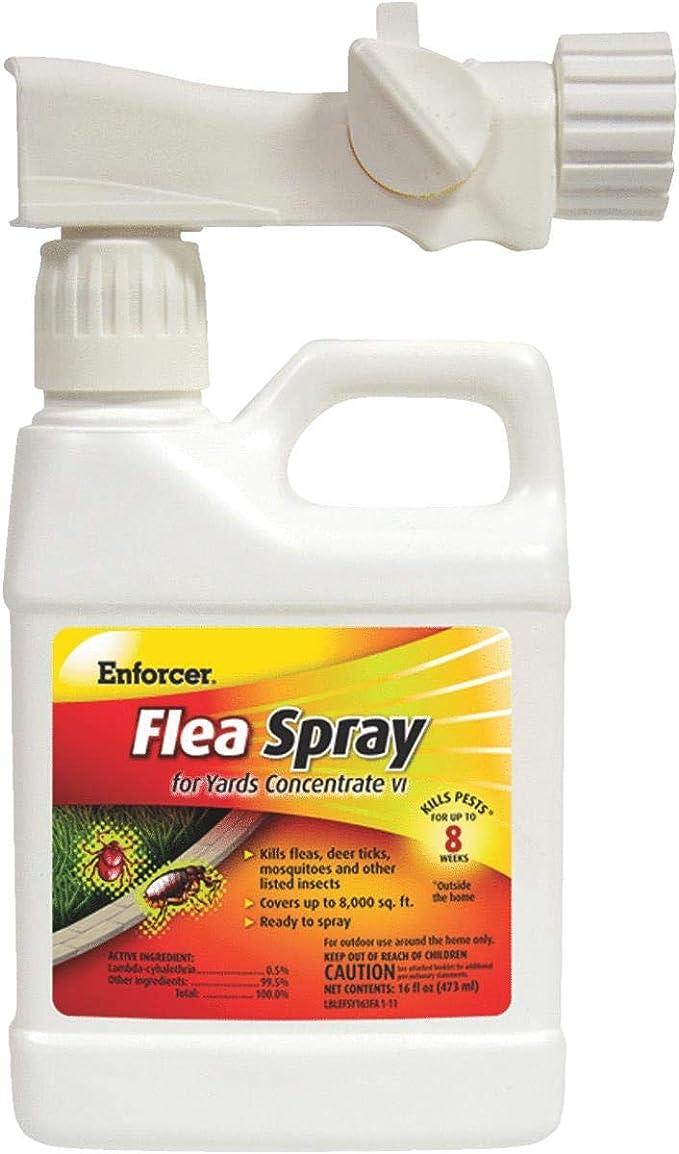 Amazon.com: Enforcer pulgas spray múltiples insectos RTU 16 ...