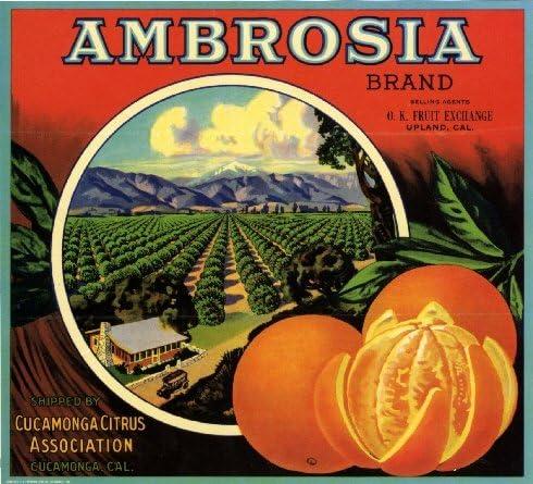 Cucamonga San Bernardino Upland Owl Orange Citrus Fruit Crate Label Art Print