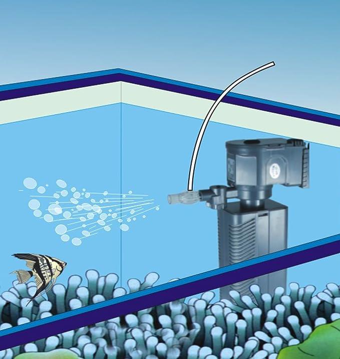 SunSun JP-022F Bomba de filtro Bomba de flujo para acuario 600l/h 8W: Amazon.es: Jardín