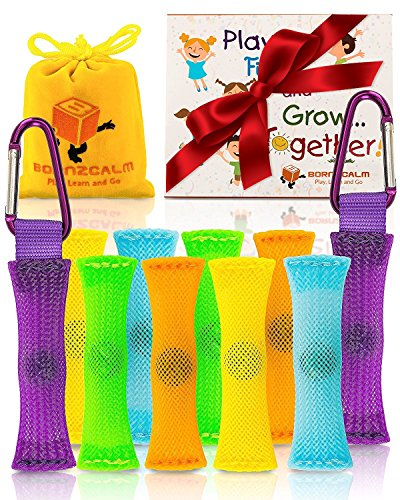 Fidget Toys - Stress & Anxiety Relief Sensory Toys for Autistic Children - Fidgets Figit Therapy Toys for Kids & Adults Dealing with ADHD, Autism, ADD & OCD + Carry Pouch, 2 Carabiners + eBook