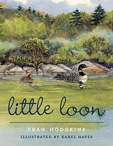 (Little Loon)