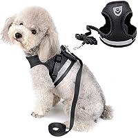 DAMIGRAM Perros Pecho de Arnés, Reflectante Antitranspirante Acolchado Seguridad Chaleco Cabestro Cinturón De Seguridad de Perro para Ejercicio de Caminar Formación Corriendo (S)