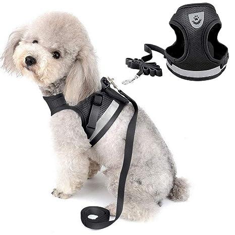 DAMIGRAM Perros Pecho de Arnés, Reflectante Antitranspirante Acolchado Seguridad Chaleco Cabestro Cinturón De Seguridad de