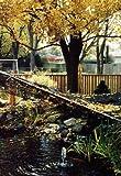 Dewitt PN302020 Deluxe Pond Protection Net, 20 Foot x 20 Foot
