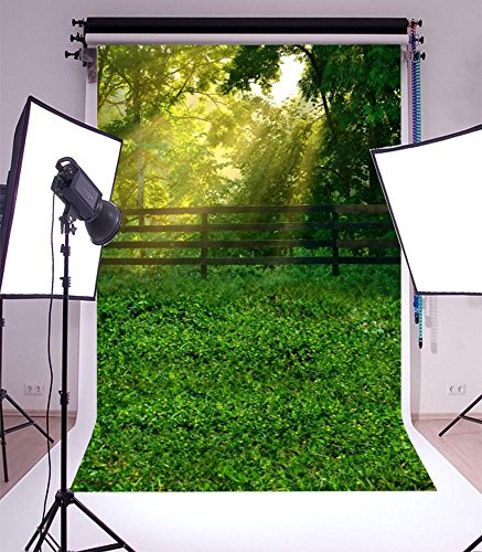 Grove and Trees Sunshine Laeacco Photography Backdrop 5X7FT Vinyl Photo Background Backdrops Outdoor Spring Scenery for Photo/Video Studio Props (Grove Springs)