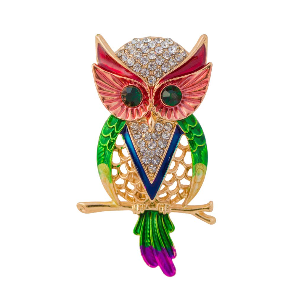 Unique Valentines Gift - Unique Owl Brooch Saree Pin
