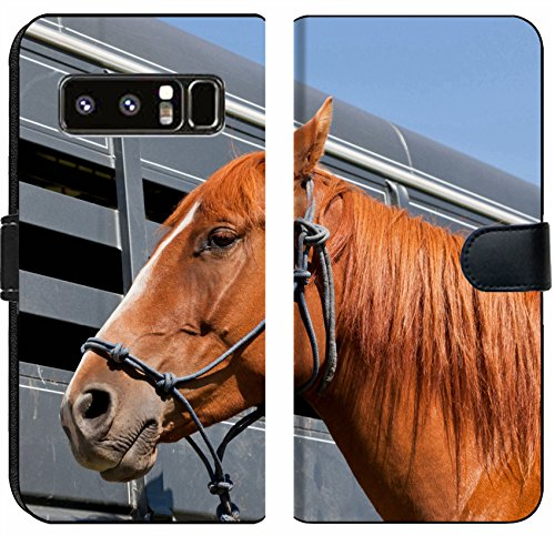 - Luxlady Samsung Galaxy Note 8 Flip Fabric Wallet Case IMAGE ID: 34247959 A close up of a reddish brown horse tied with a blue rope halter to a ho