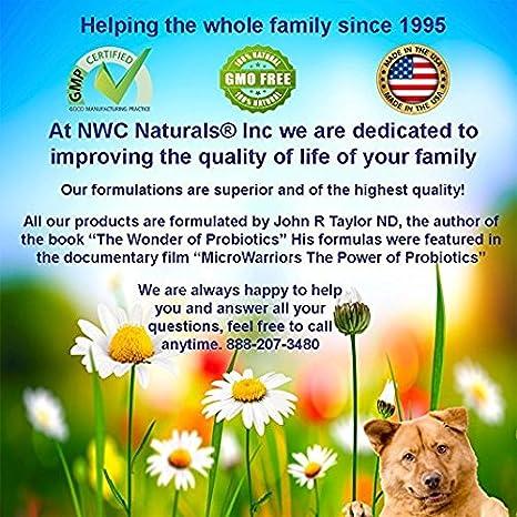 Amazon.com: NWC Naturals, MSM oro sistémico enzima ...