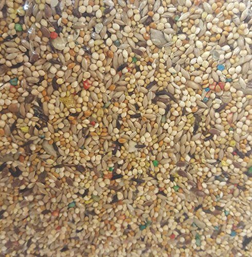 30 LBS ABBA 1900 Finch Seed Mix ()