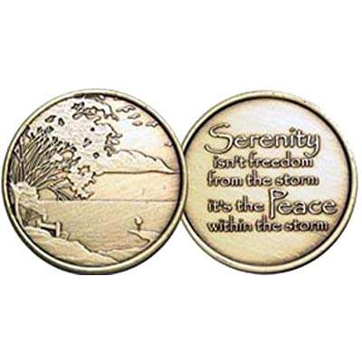 Serenity & Peace-AA-Alcoholics Anonymous-Sober-Birthday-Anniversary-Medallion-Coin-Chip: Toys & Games