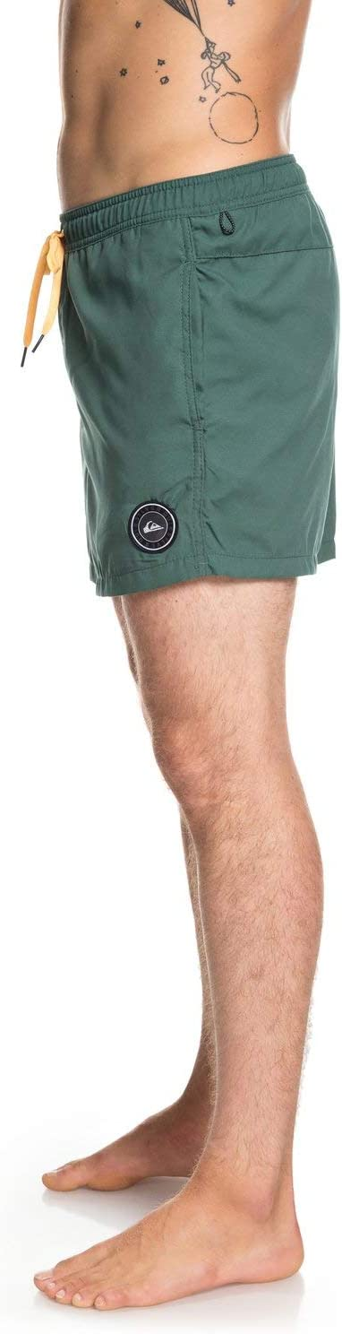 Shorts Hombre Quiksilver Everyday