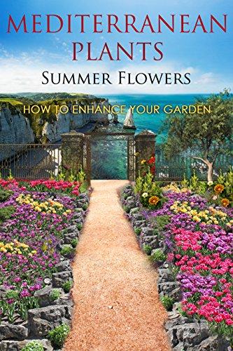 Mediterranean Plants Summer Flowers How To Enhance Your Garden