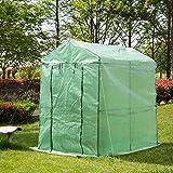 Glitzhome Garden Backyard 2 Shelf Walk-In Zipper Greenhouse Review