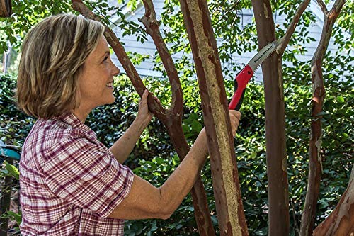 Corona RazorTOOTH Folding Pruning Saw, 10 Inch Curved Blade, RS 7265D