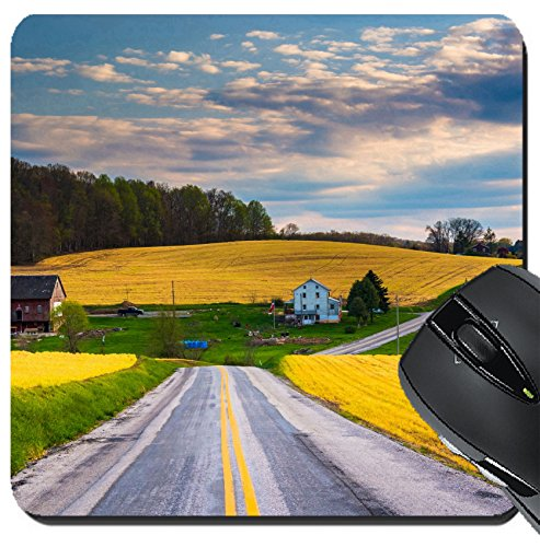 MSD Suqare Mousepad 8x8 Inch Mouse Pads/Mat design 34594088 Country road and view of farm fields and hills in rural York County - Hill Road Field