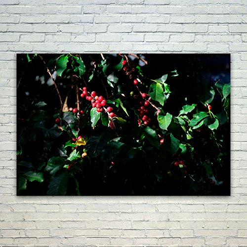 Westlake Art Berry Floral - 12x18 Poster Print Wall Art - Modern Picture Photography Home Decor Office Birthday Gift - Unframed 12x18 Inch (8009-342D1) (Berry Floral Wallpaper)