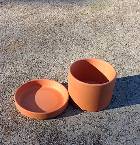 Set of 2 Natural Terra Cotta Round Fat Walled Garden Planters with Individual Trays. Indoor or Outdoor Use